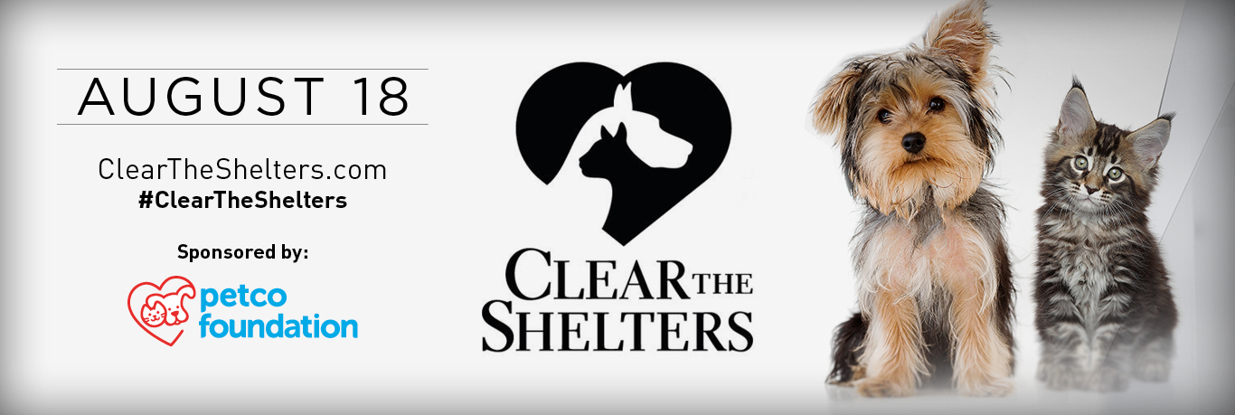 A Clear the Shelters 2018