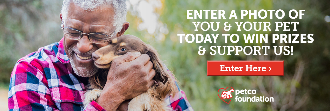 Petco Foundation's Love Changes Everything Photo Contest