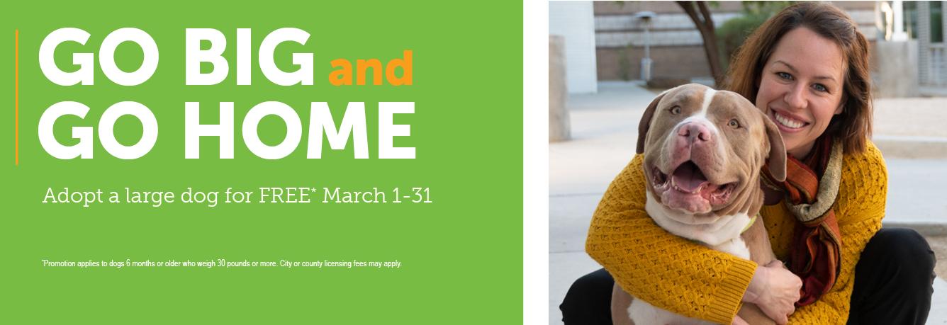 Go Big & Go Home Adoption Promo