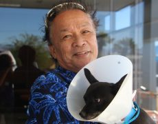 man holding dog wearing head cone