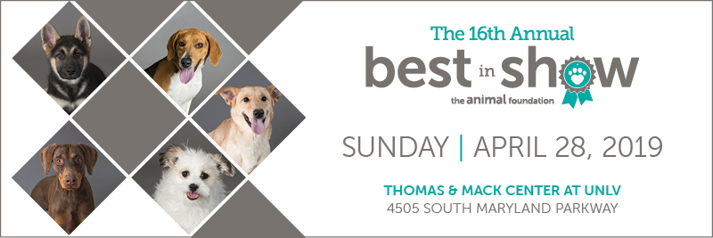 The Animal Foundation Best in Show