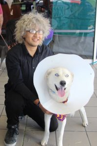 owner with dog wearing cone