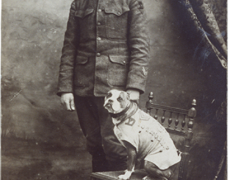 Sergeant Stubby and Robert Conroy